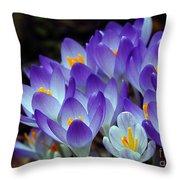 Purple Crocus Cluster Spring Choir Throw Pillow