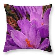 Purple Crocus With A Texture Throw Pillow