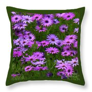 Purple Daisies Square Throw Pillow