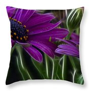 Purple Daisy Throw Pillow