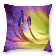 Purple Daylily Throw Pillow