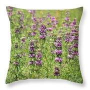 Purple Flower Field Throw Pillow