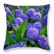 Purple Hyacinths Throw Pillow