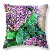Purple Hydrangeas Throw Pillow