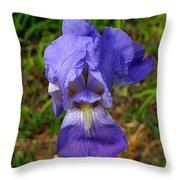 Purple Iris Throw Pillow