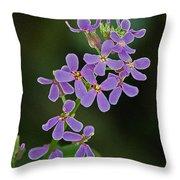 Purple Joy Throw Pillow