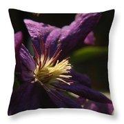 Purple Lady Throw Pillow