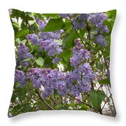 Purple Lilacs Throw Pillow
