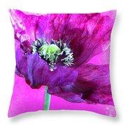 Purple Poppy On Pink Throw Pillow