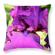 Purple Purity Throw Pillow