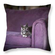 Purple Resplendent Throw Pillow