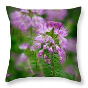 Purple Serenade Throw Pillow