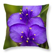 Purple Spiderwort 1 Throw Pillow