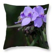 Purple Spiderwort Flowers Throw Pillow