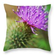 Purple Spikes Throw Pillow