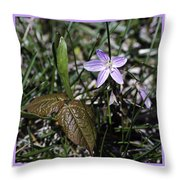 Purple Spring Trail Flower Throw Pillow