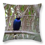 Purple Starling Throw Pillow