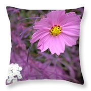 Purple Statement Throw Pillow