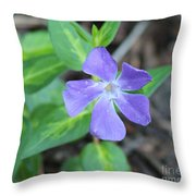 Purple Vinca Throw Pillow