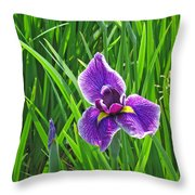 Purple Water Iris Throw Pillow