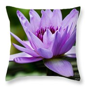 Purple Petals Water Lily Throw Pillow
