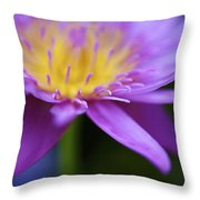 Purple Water Lily Petals Throw Pillow