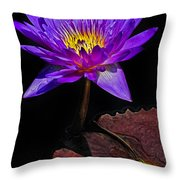 Purple Waterlily Throw Pillow