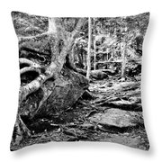 Puttin Down Roots Throw Pillow