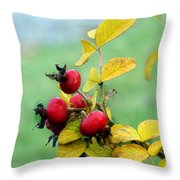 Pyracantha Berries Life Throw Pillow