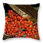 Pyracantha Berries Throw Pillow