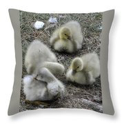 Quadruplets Qp Throw Pillow