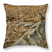 Quail On Rock Throw Pillow
