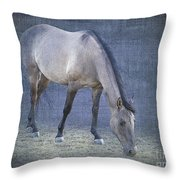 Quarter Horse In Blue Throw Pillow by Betty LaRue