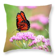Queen Butterfly Sitting On Pink Flowers Throw Pillow