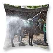 Quick Shower Before The Race Throw Pillow