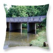 Quiet Creek Throw Pillow