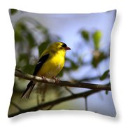 Quiet In The Shadows Throw Pillow