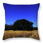 Quiet Meadow Throw Pillow