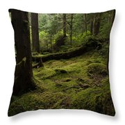 Quietly Alive Throw Pillow