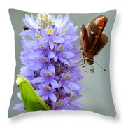 Quilling Butterfly Throw Pillow