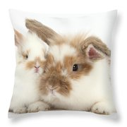 Rabbit And Baby Bunny Throw Pillow