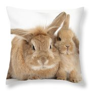 Rabbit And Baby Rabbit Throw Pillow