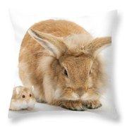 Rabbit And Dwarf Hamster Throw Pillow