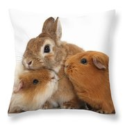 Rabbit And Guinea Pigs Throw Pillow