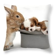 Rabbit And Spaniel Pups Throw Pillow