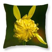 Rabbit Flower Throw Pillow