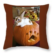 Rabbit Joins The Harvest Throw Pillow by Alanna DPhoto