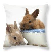 Rabbits And China Bowl Throw Pillow