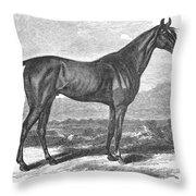 Racehorse, 1867 Throw Pillow
