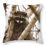 Racoon Throw Pillow